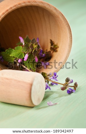 Fresh herbs in a wooden mortar on a mint wooden table  - stock photo