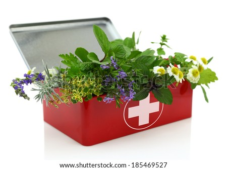 Fresh herbs in first aid kit - stock photo