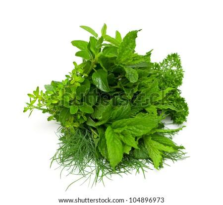 fresh herbs isolated on white backfround - stock photo