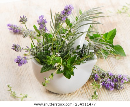 Fresh herbs on a wooden table. Selective focus - stock photo
