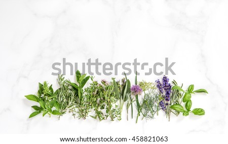 Fresh herbs on marble stone background. Basil, rosemary, sage, thyme, mint, dill, savory, chive, lavender - stock photo