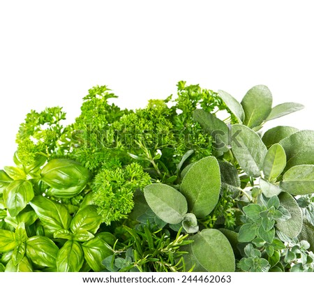 Fresh herbs over white background. Healthy food ingredients. Marjoram, parsley, basil, rosemary, thyme, sage - stock photo