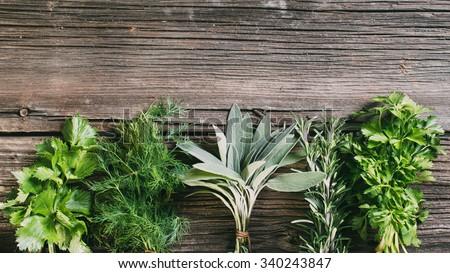 Fresh herbs: thyme, tarragon, sage, rosemary, parsley, mint, dill, coriander, celery - stock photo