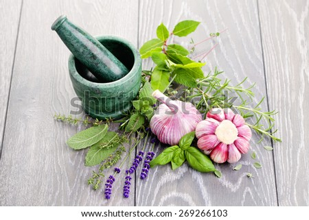 fresh herbs with garlic - herbs and spices - stock photo