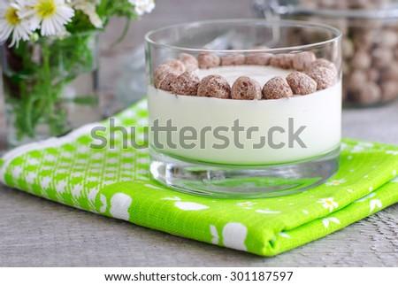 Fresh homemade yogurt with rye bran - stock photo