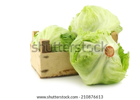 fresh iceberg lettuce in a wooden crate on a white background - stock photo