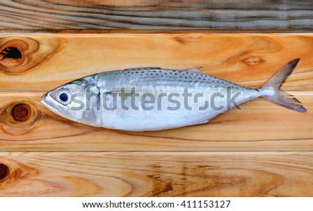 fresh indian mackerel fish for cooking from asian fishery market - stock photo
