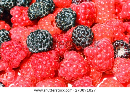 Fresh, juicy and healthy raspberries - stock photo