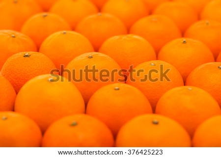 Fresh, juicy, bright tangerines photographed with a small depth of field - stock photo