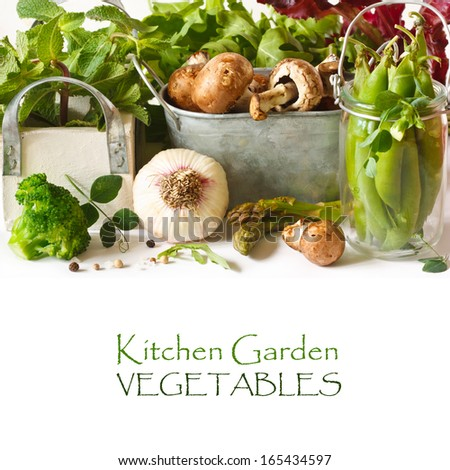 Fresh kitchen garden vegetables and aromatic herbs on a white background. - stock photo