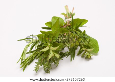 Fresh kitchen herbs:  Rosemary, sage, oregano, thyme, tarragon - stock photo