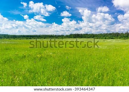 Fresh Landscape Scenic View  - stock photo