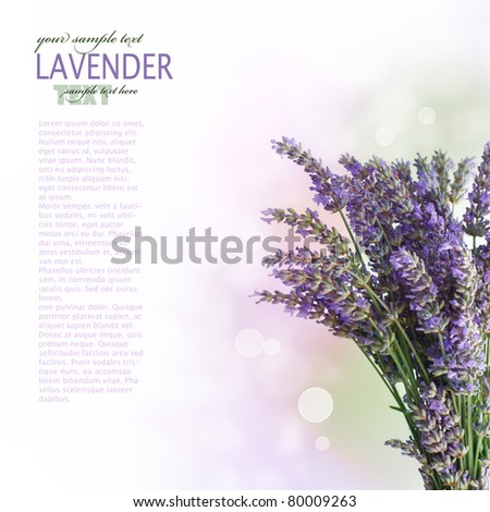 Fresh lavender flower over wooden background with bokeh - stock photo