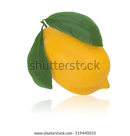 fresh lemon citrus with green leaves isolated on white background - stock photo