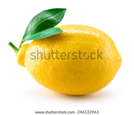 Fresh lemon fruit with leaves isolated on white - stock photo