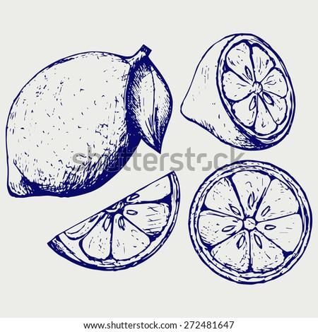 Fresh lemons. Doodle style. Raster version - stock photo