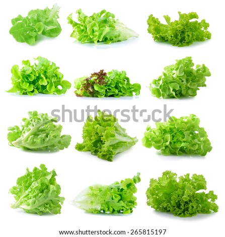 fresh  lettuce leaves isolated on white - stock photo