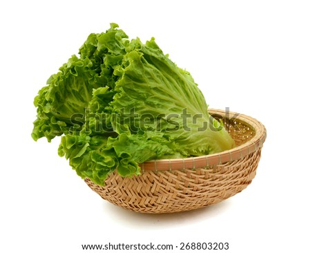 fresh lettuce salad  in basket isolated on white  - stock photo
