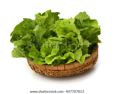 Fresh lettuce salad leaves bunch isolated on white background cutout - stock photo