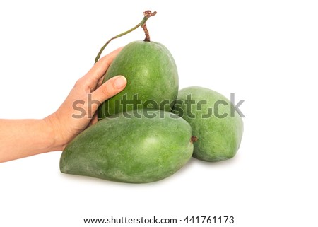 Fresh mango - Green mangoes on woman hands with isolated on white background. - stock photo