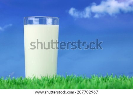 Fresh milk in a glass on a meadow in front of a blue sky with copyspace - stock photo