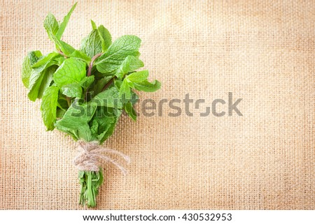 Fresh mint bunch on a burlap background - stock photo