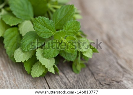 Fresh mint on wooden background - stock photo