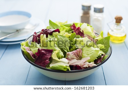 Fresh mixed green salad in a bowl close up - stock photo
