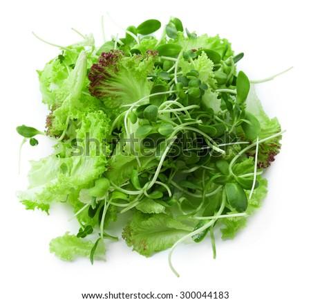 Fresh mixed green salad isolated on white - stock photo