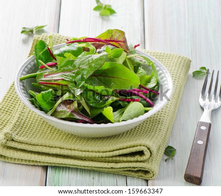 Fresh mixed salad leaves. Selective focus - stock photo