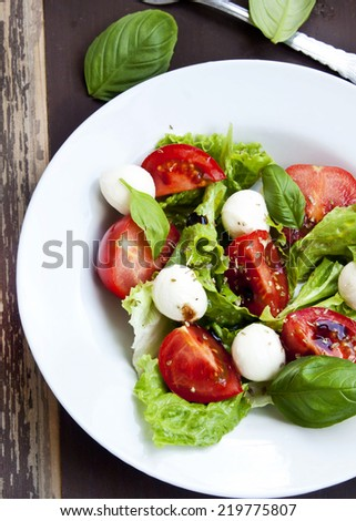 Fresh Mozarella and Tomato Salad with Basil Leaves and Green Lettuce. - stock photo