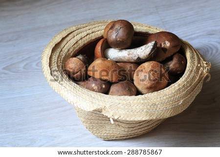 fresh mushrooms in a basket - stock photo