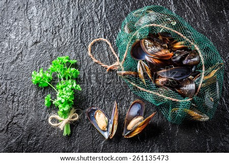 Fresh mussels on ice with ingredients - stock photo