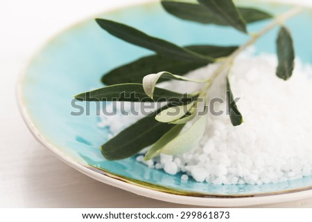 fresh olive branch with sea salt - stock photo