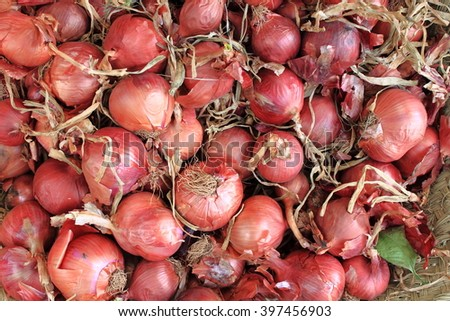 Fresh onions displayed in greengrocery - stock photo
