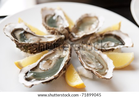Fresh open oysters on plate with lemon, selective focus - stock photo