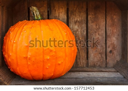 Fresh orange pumpkin inside an old wooden crate with room for copy space - stock photo