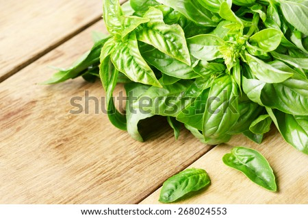 Fresh organic basil leaves on the wooden table - stock photo