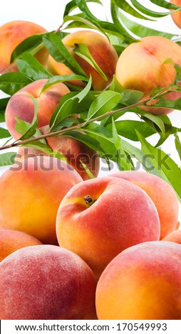 Fresh organic peaches with leaves - stock photo