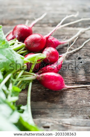 Fresh Organic Radish on wooden table, rustic style, selective focus - stock photo