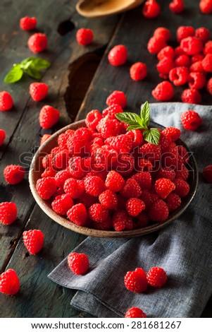 Fresh Organic Raw Raspberries in a Bowl - stock photo
