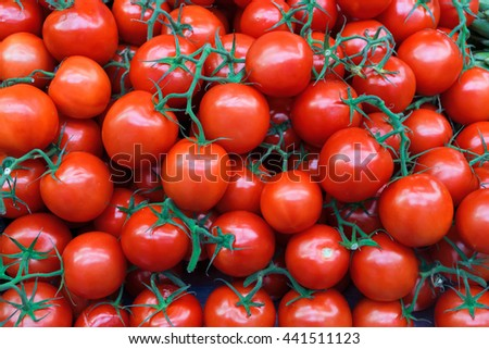 Fresh organic tomatoes as background. Close up. - stock photo