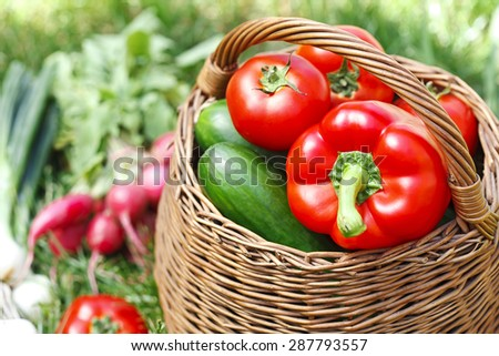 fresh organic vegetables in a wicker basket - stock photo