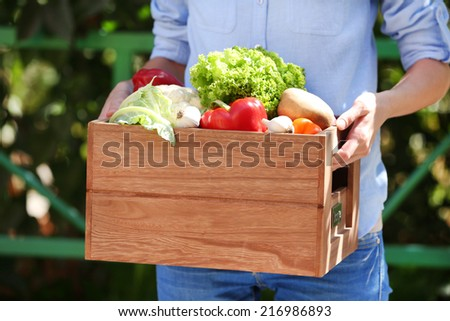 Fresh organic vegetables in wooden box in hand outdoors - stock photo