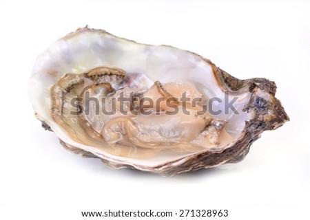 Fresh oyster - stock photo