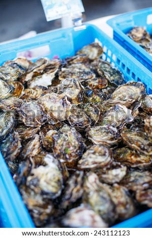 fresh oysters on mediterranean street market. Organic local seafood - stock photo