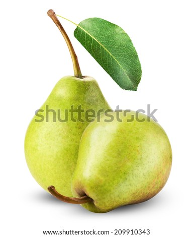 Fresh pears isolated on a white background. - stock photo