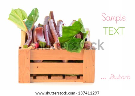 Fresh picked rhubarb in wooden crate on white background with room for your text - stock photo