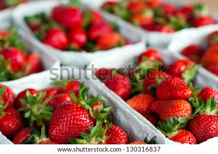Fresh Picked Strawberries at the market - stock photo
