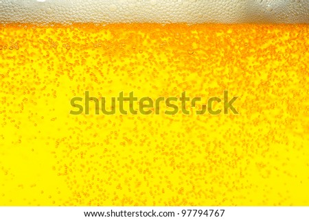 Fresh pils beer with froth and condensed water pearls - stock photo